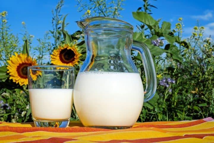 A la découverte de la fête du lait bio