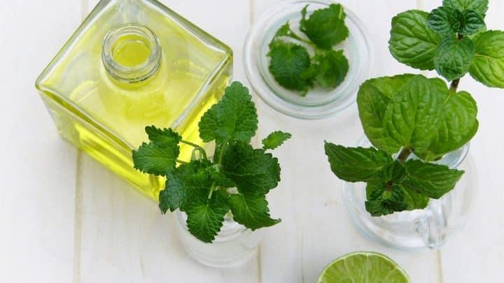 A quoi peut bien servir l'huile essentielle de menthe poivrée ?