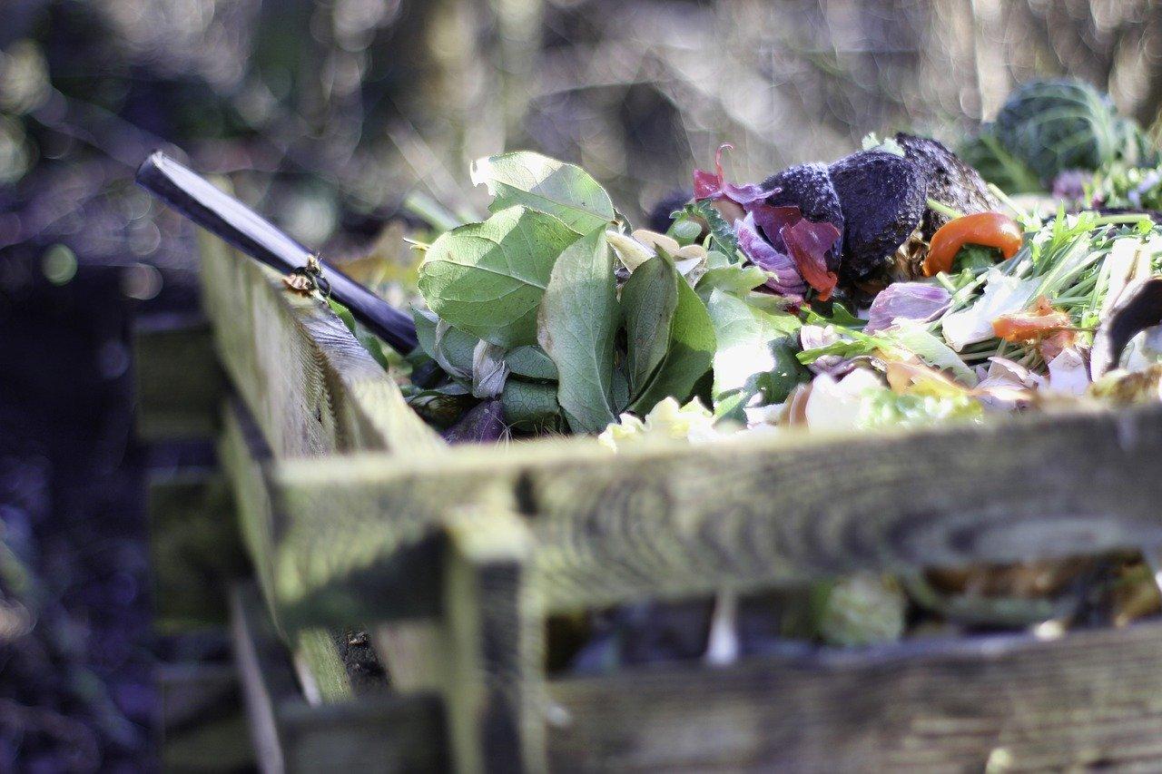 Aperçu sur quelques techniques de gestion des déchets alimentaires